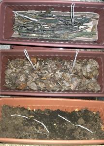 Hochbeet im Blumentopf