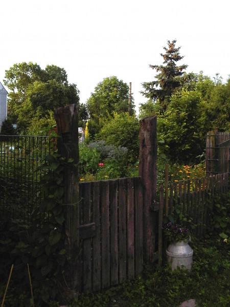 12wilder Garten